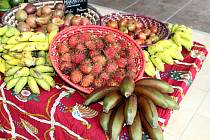 V pátek 11. června míří do OC Chomutovka Africké trhy.