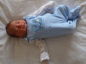 Elena Brzokoupilová se narodila 8. ledna 2018 v 0.15 hodin rodičům Kateřině Brzokoupilové a Jaroslavu Stankovičovi. Vážila rovné 3 kg a měřila 49 cm.