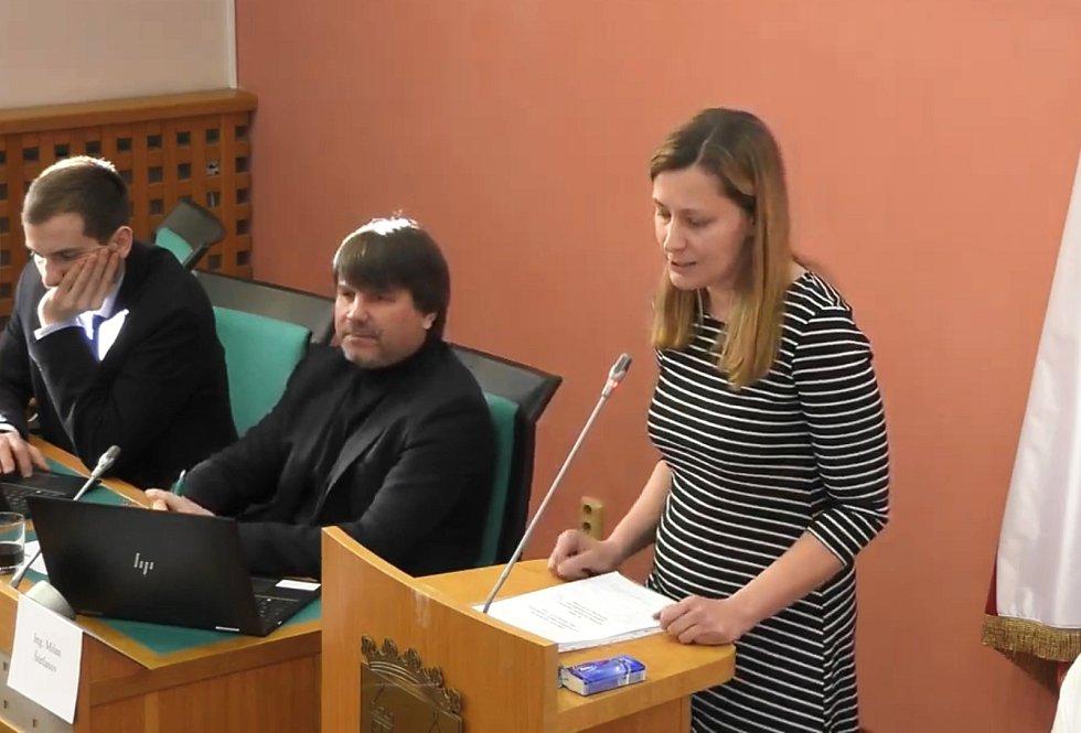 Poznámky zastupitelů komentovala lokální konzultantka vládní agentury Kamila Zinčenková.