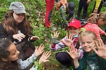 Děti ze 4. a 5. třídy ZŠ Kadaňská Chomutov se vydaly do lesa s lesníkem.