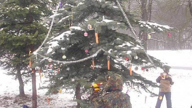 Stromek v Bezručově údolí ozdobený skauty.