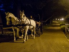 Chomutovský zoopark pořádá večerní májové jízdy kočárem.