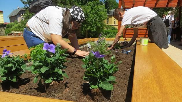 Komunitní zahrada, která funguje v Chebu. Ilustrační foto