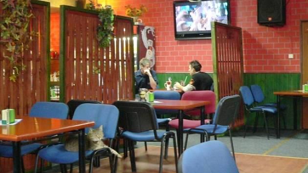 Interiér Restaurace Áčko.