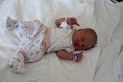 Nela Pokryvková se narodila mamince Monice Landa a tatínkovi Milanovi Pokryvkovi z Jirkova 7.4.2019  ve 13:45 hodin. Měřila 50 cm a vážila 3,2 kg. Doma na ni čekají sourozenci Sofie (6 let) a Dan (11 let).