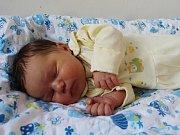 Darina Balajová se narodila mamince Marice Balajové z Klášterce nad Ohří 31.12. 2018 v 16:50 hodin. Měřila 50 cm a vážila 3,16 kg.