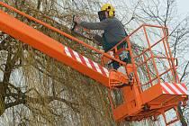 PLOŠINY pomáhají při prořezu stromů i vánoční výzdobě města.