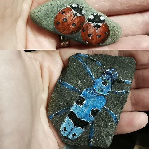 Kameny zdobí třeba brouci.