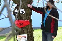 U Domova dětí Šuplik v Kadani je strom Rouškovník.
