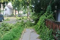 Následky noční bouře v Chomutově.