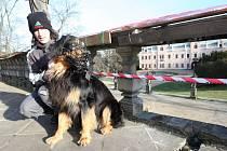 Historické zábradlí sala terreny  poničili vandalové.  Jejich počínání nechápe ani tamní obyvatel Ondřej Manojlín, který chodívá do parku venčit svého psa Maxe.