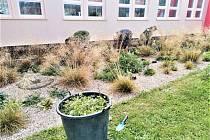 Výsadba zeleně, která souvisí s oživením horních sídlišť, se chýlí ke konci.