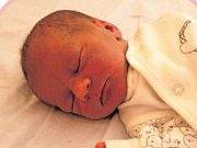 Adina Klimešová se prvně rozkřičela v rukách chomutovských porodníků 1.2.2017 v 13:44 hodin. Z holčičky s 3,25 kg a 51 cm má radost nejen maminka Edita Knížová, ale také šťastný tatínek Michal Klimeš z Chomutova.
