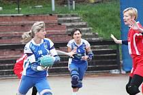 Ze zápasu SK Chomutov NH - TJ Šroubárna Žatec 14:8