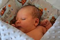 Ellie Jones se narodila jako prvorozená 1.11. v 18:32 a její rodiče Barbora Mimrová a Nicholas Jones z ní mají velkou radost. Holčička měří 53cm a váží 3800g.