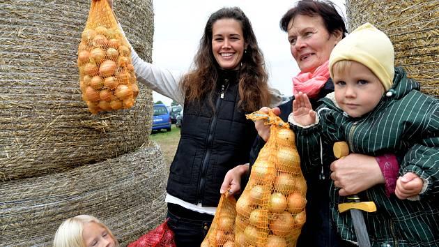Letos se dostalo na každého. Cibule se letos urodilo i přes sucho dost, zemědělci cibuli speciálně zavlažovali.
