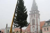 Vánoční strom na náměstí 1. máje.