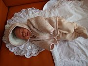 Rozálie Karásková se narodila v chomutovské porodnici ji 7.1.2017 v 13:35 hodin na svět přivedla maminka Romana Koriťáková. Doma už na svou princeznu s mírami 3,3 kg a 49 cm netrpělivě čeká tatínek Petr Karásek.