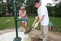 UNIKÁTNÍ PŘÍRODNÍ HŘIŠTĚ v Jirkově v neděli opět obsadí dobrovolníci. Loni tam vysázeli vrbičkové prolézačky, letos osadí pahorek kolem pumpy okrasnými keři. Přidat se můžete i vy.