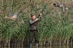 Hon na kachny na Pražských rybnících v Chomutově
