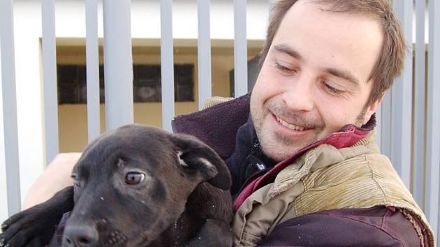 VEZME SI HO NĚKDO? Jedno z opuštěných štěňat, asi křížence pitbulla s labradorem, drží pracovník chomutovského útulku Tomáš Kulhánek.