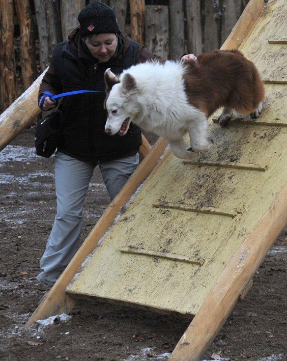Otevření psího hřiště v Chomutově.
