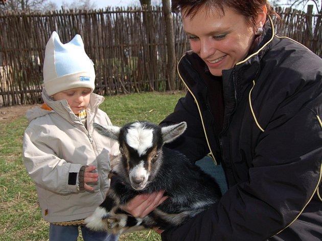 Malý Vojta Lebeda  s maminkou přijel do Podkrušnohorského zooparku až z Kolína.