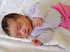 Elen Předotová se narodila 26. září 2017 ve 4.35 hodin rodičům Tereze a Karlu Předotovým z Chomutova. Vážila 3,05 kg a měřila 50 cm.
