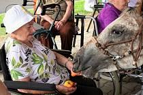 Sawanga s Cipískem na návštěvě mezi seniory v Kadani