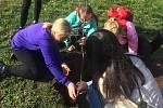 Sedmáci zasadili lípu