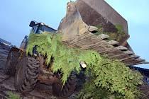 Technické služby letos začátkem ledna likvidovaly přes třicet tun vánočních stromků. Vyrobí se z nich kvalitní kompost, který si mohou obyvatelé města zdarma odvézt na své zahrádky.