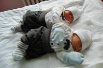 Dvojčátka Jakub a Denis Chlebaňovi rozšířili dne 22.11.2015 do té doby sedmičlennou rodinu z Jirkova. Jakoubek (na fotografii vpředu) se narodil v 11:50 hodin s mírami 1,9 kg a 42 cm. Denis se narodil o čtyři minuty později, vážil 1,9 kg a měřil 43 cm.