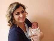 Richard Holeček se narodil 11. května 2018 ve 12.31 hodin rodičům Marie Tomsové a Petru Holečkovi z Března. Měřil 51 cm a vážil 3,23 kg.