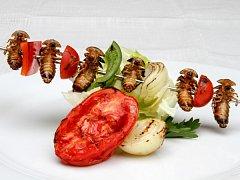 Hmyz na talíři propagátora této stravy Davida Švejnohy