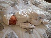 Neděle 19.2.2017 byla velkým dnem pro Lenku Hromádkovou a Lukáše Palubjaka z Údlic. V 1:54 hodin se z nich totiž stali novopečení rodiče. V chomutovské porodnici se jim narodila krásná dcera Ella Palubjaková. Po narození měřila 53 cm a vážila 3,8 kg.