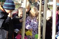 Druháci z místní školy zalévají nově vysázené stromy.