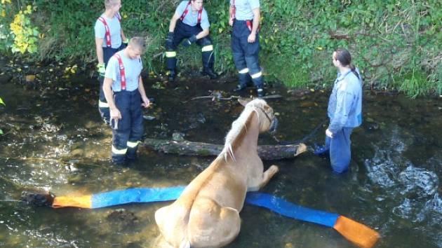 Hasiči zachraňovali koně.