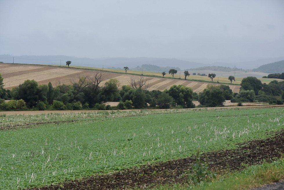 Zemědělská krajina kolem Veliké Vsi.