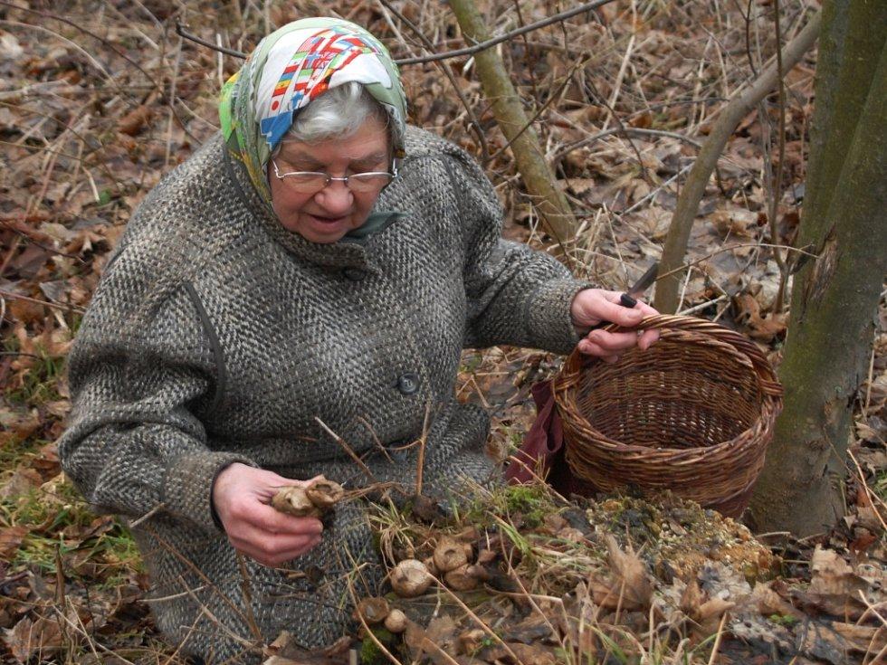 Marie Fabiánová našla píchavky.