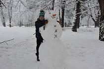 Už jste postavili svého sněhuláka?