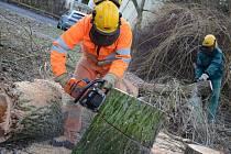 Pracovníci Technických služeb rozřezávají zbytek polámaných stromů, které poničil nedávný silný vítr.