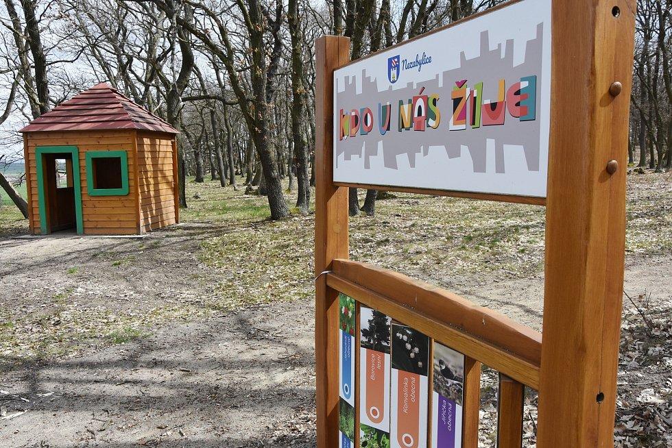 Dětský les v Hořenci, který k Nezabylicím také patří.