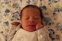 David Singer se narodil mamince Báře Singerové a tatínkovi Davidovi Nguyenovi z Kadaně 16.10.2019 v 6:14 hodin. Měřil 51 cm a vážil 2,52 kg. Životem jej bude provázet sedmiletý bráška Denis.