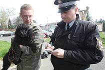 Jirkovský strážník Pavel Mindák kontroluje pejskaře Martina Waice, který byl venčit pudlí slečnu. Fenka neměla psí známku, tu pejskař nechal prý doma.