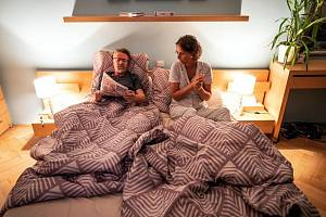 Kino Svět v Chomutově opět zahajuje promítání filmem Bábovky.