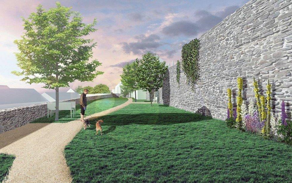 Patu starobylých hradeb mají zdobit divizny, psí víno a další rostliny. Vysázeny budou jabloně, hrušně a švestky.