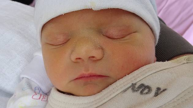 Pusztakürti Alois se narodil 26.1. v 3:33. Měřil 47cm a vážil 2670g. Rodiče Soňa a Tomáš Pusztakürti z Kadaně z něho mají radost.