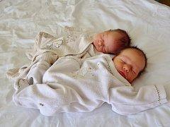 Tereza (vlevo) a David Andrtovi se narodili 16. srpna 2017 rodičům Markétě a Luboši Andrtovým ze Spořic. Terezka se narodila v 15.42 hodin, vážila 2,45 kg a měřila 47 cm. David se narodil o dvě minuty později, vážil 2,49 kg a měřil 48 cm.