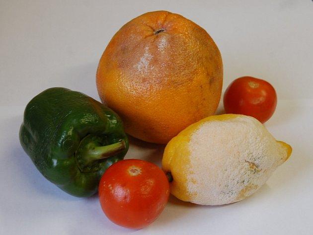 Plesnivý citron, nahnilý pomeranč, pomačkaná rajčata. To jsme našly v Globusu.