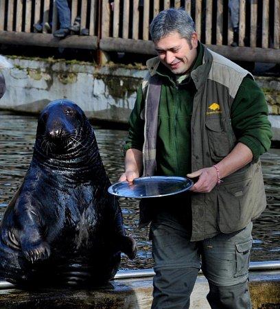 Oslava narozenin tuleně Kaška a hry pro děti.